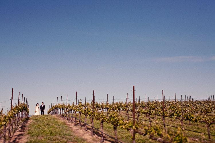 05_super-fun-happy-Mark-Brooke-Photographers-Wedding-photography